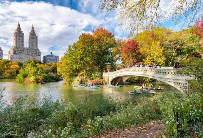Explore the Central Park